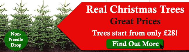 christmas-trees-great-prices