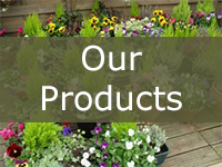 Our Garden Centre Products