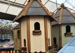 birdcare-dovecote