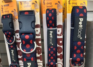 pet-care-dog-collars