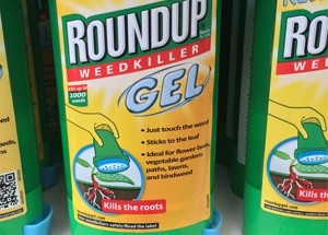 weed-control-roundup-gel